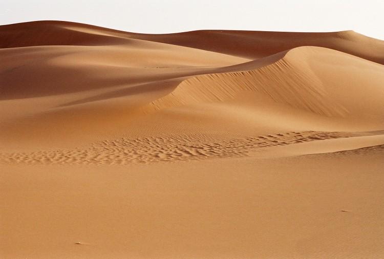 Desert Trek Sahara