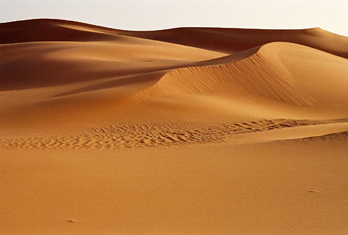 lib sand1