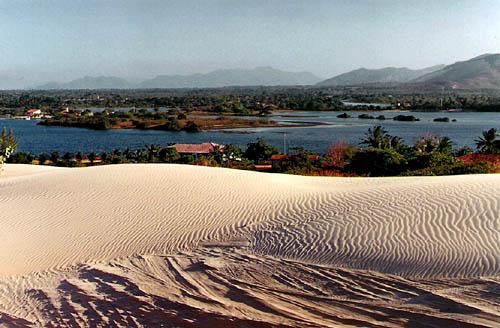 brazil oasis